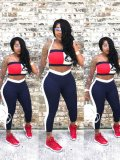 Jurllyshe Plus Size Sexy Fashionable Color Block Tube Top With Pants Set